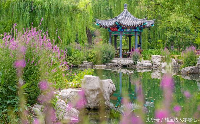 夏日五龍潭公園