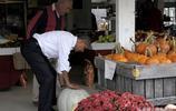 實拍奧巴馬退休後的生活,和夫人購物,深受民眾喜愛