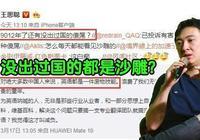 IG老闆王思聰:9012還有沒出過國的沙雕?網友:你換個爹出省都難
