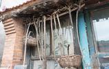 被嫌棄農村遭城裡人羨慕,一位旅行者心聲:老了去找個這樣的小院