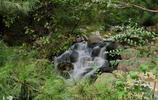 天津盤山的風景
