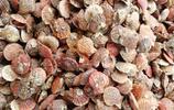 農村大集 海蝦20-28元一斤 海蠣子10元5斤半 一6元一斤小魚受歡迎