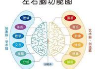 世界記憶大師:13種學習記憶法,記憶力突飛猛進!