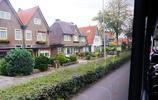 兔子在荷蘭——荷蘭羊角村