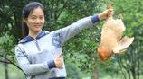 杭州:80後海歸美女放棄外貿工作回農村養雞,實現年營業額2000萬
