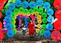 七彩洋傘節亮相儀徵