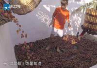 謝霆鋒吳彥祖用腳製作葡萄汁,吳彥祖經紀人不願喝:買止瀉藥了嗎