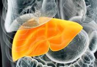 """6種人是脂肪肝高發人群,專家:做好3點,脂肪肝""""不治而愈""""!"""