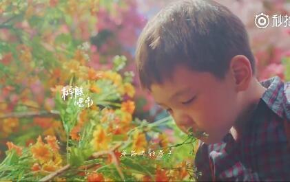 杜江兒子杜麒麟家庭背景個人資料 杜江兒子為什麼叫嗯哼