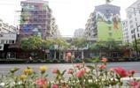 湖北人在杭州工作,對比杭州和武漢