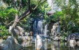 悉尼誼園——坐落在國外都市的中國古典美景!