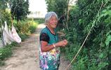 農村人為啥要到城市買房?是攀比享受還是生活富裕?奶奶說出實情