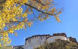這裡是拉薩著名的園林建築,也是拍攝布達拉宮倒影最好的地方?