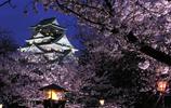 日本大阪市之旅,一趟完美的旅行,值得一遊!