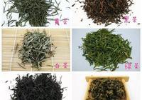 綠茶紅茶白茶黑茶你到底適合哪一種?如何保存?功夫茶如何沖泡?