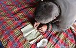 78歲老人住寒窯吃野菜愛畫畫,看他活成啥樣子