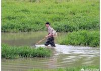 去農村野外電魚的越來越不受待見,電魚都有什麼破壞呢?遇到該怎麼辦?