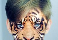 :Adobe Photoshop超詳細惡搞換臉+成世界末日城市場景圖片教程