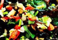 高大廚教你做美食:涼拌木耳 香脆黃瓜條 孜然牛肉 捲心菜炒粉絲