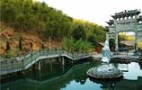 安吉——中國大竹海