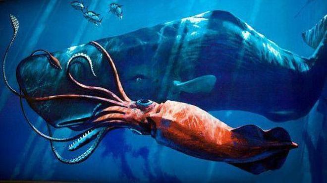 海洋中的10種奇葩生物,第3種有毒卻是美味,第8種吞食後代!