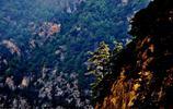 風景圖集:甘肅有多美系列之臨澤