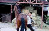 劉燁拍攝劇組馬突然驚了,現場人嚇得都躲起來了,只有他出面了