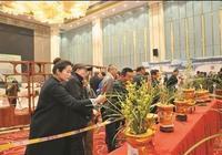 溧陽市舉辦第十屆蕙蘭展