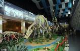 諸城恐龍世紀園