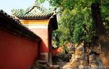 頤和園內有一座乾隆清漪園時期的雲會寺,主殿和佛像基本保存完好