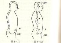 四種氣功呼吸法:喉頭、胸式、腹式、體呼吸!
