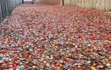 """實拍:一個""""垃圾場""""成旅遊景點,遊客費盡心思的把垃圾帶回家"""