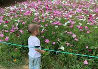 李金羽晒兒子照片,滿2歲很像他,妻子年輕漂亮,去年底舉辦婚禮