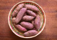 紅薯到底是升糖還是降糖的食物?