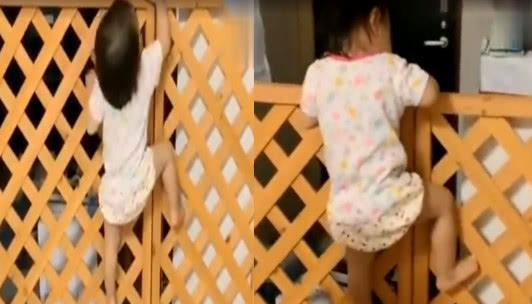 小寶寶遇到欄杆,反應都是怎樣的?接下來畫面,讓人笑出眼淚了來