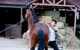 劉燁拍攝組馬突然驚了,現場人嚇得都躲起來了,只有他出面了