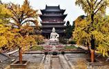 南京:這個不為人知的寺廟因為銀杏而成為新晉網紅