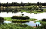 西安這個國家溼地公園免費開放,攝影、垂釣好去處