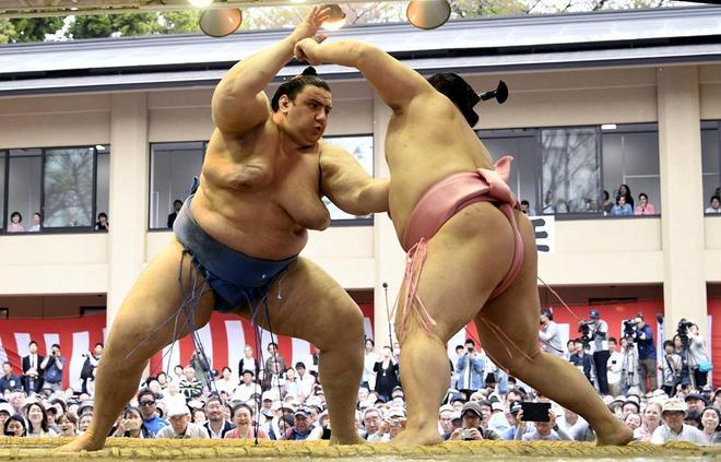 日本相撲冠軍超霸杯暨表演賽東京開幕