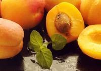 現在你買杏子吃了嗎?先看看杏子的功效作用和禁忌