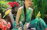 蒼山洱海的孔雀公主——楊麗萍