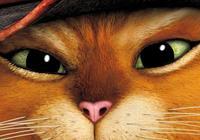 夢工廠宣佈:時隔八年拍攝《穿靴子的貓》續集電影!