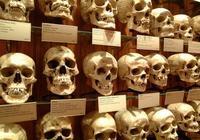 恐怖博物館|讀客來稿