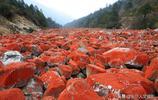 世界獨一無二的奇觀 整條峽谷都是鮮紅的石頭 是風光攝影的好地方