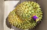 三寶太監鄭和下南洋對這種水果稱讚不已,現在讓不少人迷上了