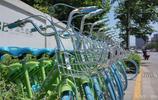 共享單車中的變色龍,三角錢的酷騎單車
