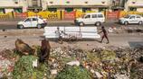 印度街頭實拍:在路邊用手臂和麵,光腳蹲灶臺做餅,難怪吃壞肚子