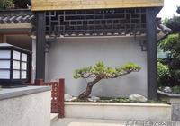 流水的園林設計,鐵打的中式庭院