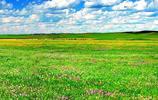 迷人的錫林郭勒大草原風光