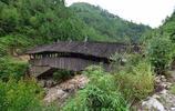 泰順三條橋,綠樹掩映,頗具特色